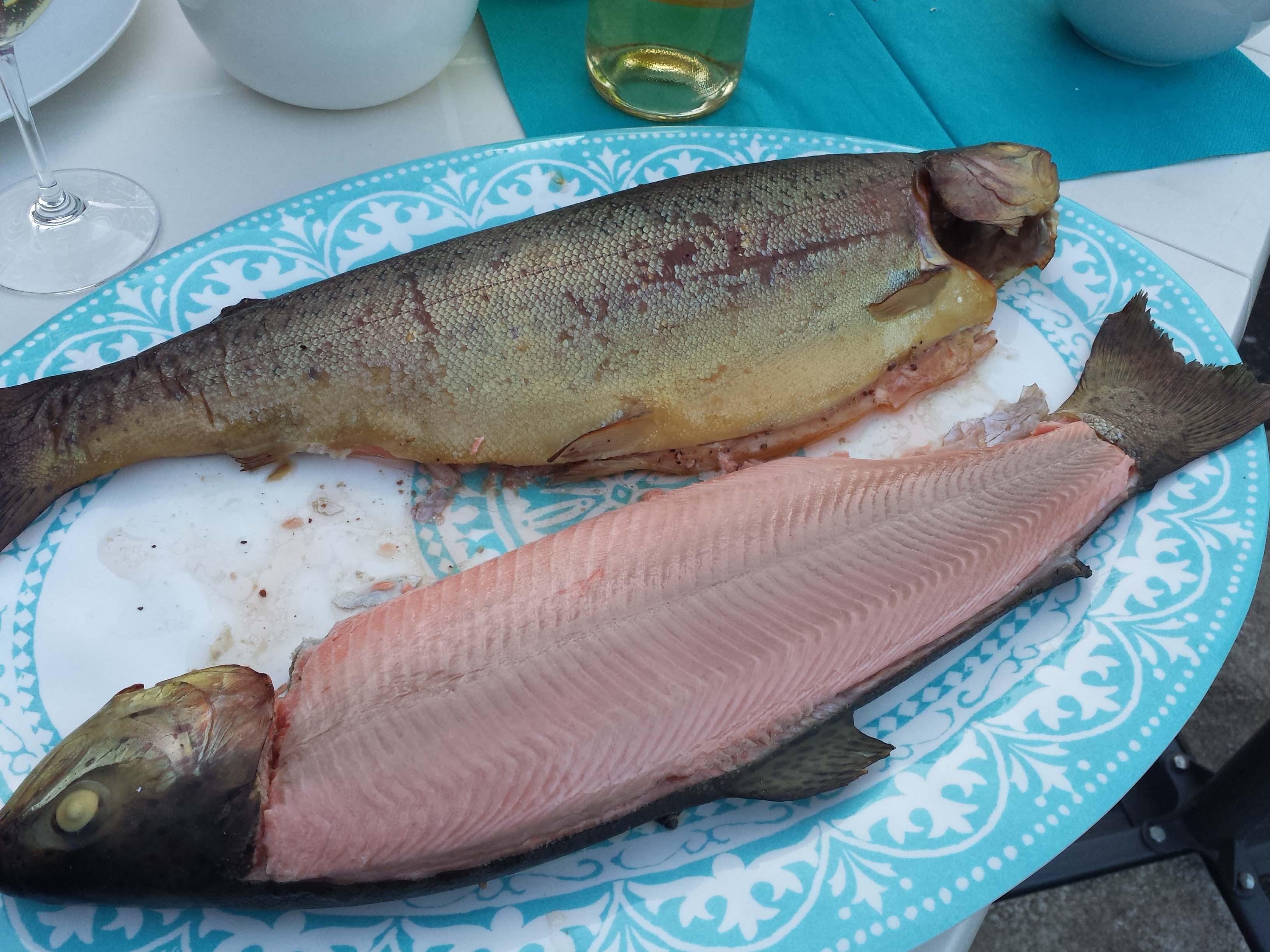 Viel Fisch ca